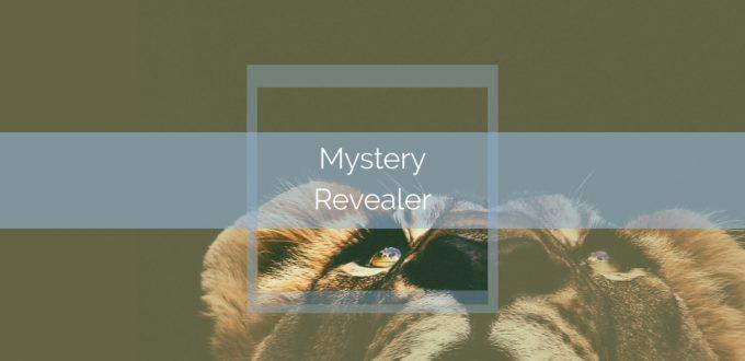Mystery Revealer