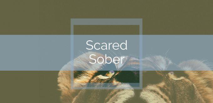 Scared Sober