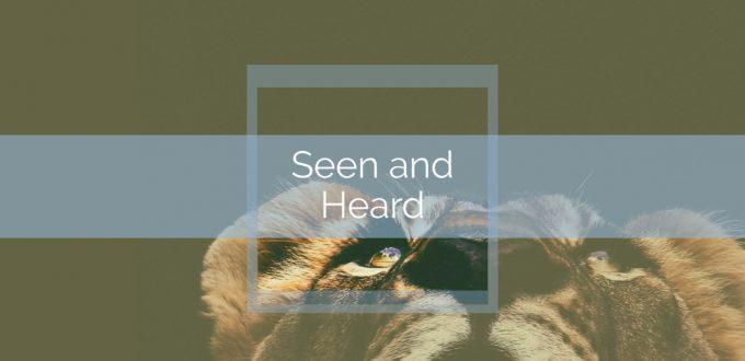 Seen and Heard