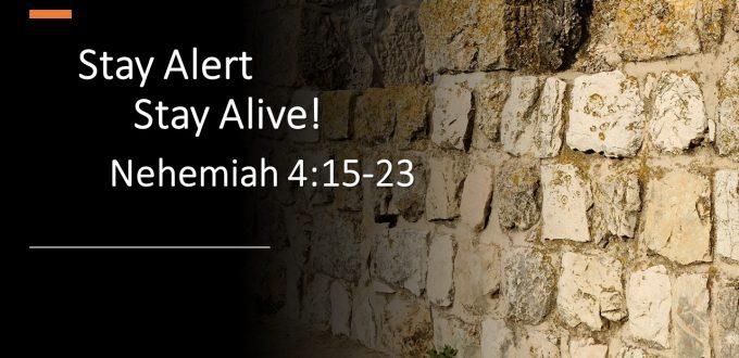 Stay Alert, Stay Alive!